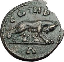MACRINUS 217AD Parium Parion MYSIA Authentic Ancient Roman Coin SHE WOLF i64953
