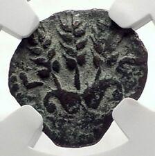 Herod AGRIPPA I JERUSALEM Biblical Claudius Time Ancient Greek Coin NGC i70886