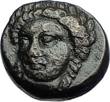 GRYNION or Gyrneion Aeolis 306BC Apollo Shell RARE Ancient Greek Coin i69980