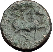 KASSANDER killer of Alexander the Great's FAMILY Ancient Greek Coin Horse i62812