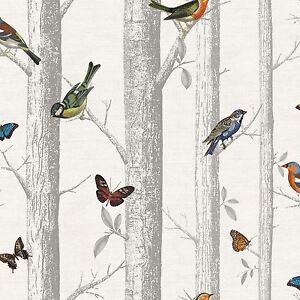 Di jorgji panteqi su pinterest. Carta Da Parati Uccelli Acquisti Online Su Ebay