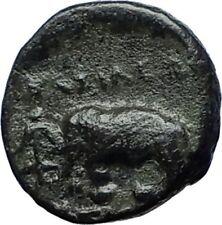 ANTIOCHOS III the GREAT - Rare R1 Ancient Greek SELEUKID Coin ELEPHANT i69822