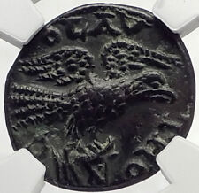 GALLIENUS 253AD Alexandria Troas Authentic Ancient Roman Coin EAGLE NGC i70142