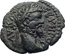 SEPTIMIUS SEVERUS 193AD Nicopolis ad Istrum  Roman Coin Bowl of Fruit  i73211