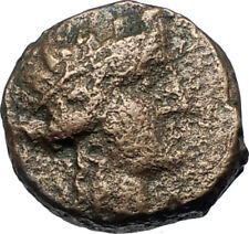 MARONEIA in Thrace 148BC Authentic Ancient Greek Coin - DIONYSUS WINE GOD i67914