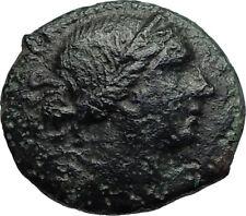 RHEGION in BRUTTIUM  Authentic Ancient 260BC Greek Coin w ARTEMIS & LYRE i67172