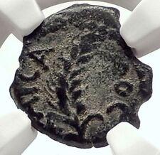 MARCUS AMBIBULUS Augustus Jerusalem Ancient 10AD BIBLICAL Roman Coin NGC i70856