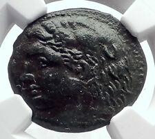 SYRACUSE in SICILY under PYRRHOS Hercules Athena Ancient Greek Coin NGC i72051