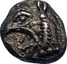 PHOKAIA in IONIA Rare Archaic 521BC Greek Silver Hemiobol Coin w GRIFFIN i66963
