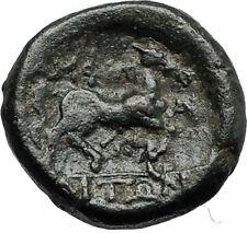 AMPHIPOLIS in Macedonia 146BC RARE R2 Ancient Greek Coin POSEIDON & HORSE i66787