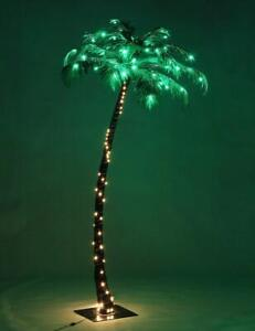 lighted palm tree in other outdoor