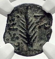Biblical Jerusalem Saint Paul NERO PORCIUS FESTUS Ancient Roman Coin NGC i70964