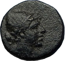 AMISOS PONTUS 105BC Mithradates VI Time Ancient Greek Coin PERSEUS HARPA i68086