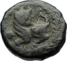 LEO I the Tracian 457AD Constantinople Authentic Ancient Roman Coin LION i69540