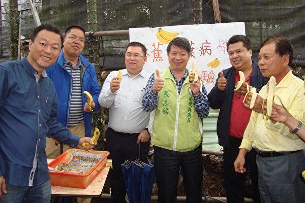 陳水木抗黃葉病有成 國際農業專家來取經   香蕉   大紀元