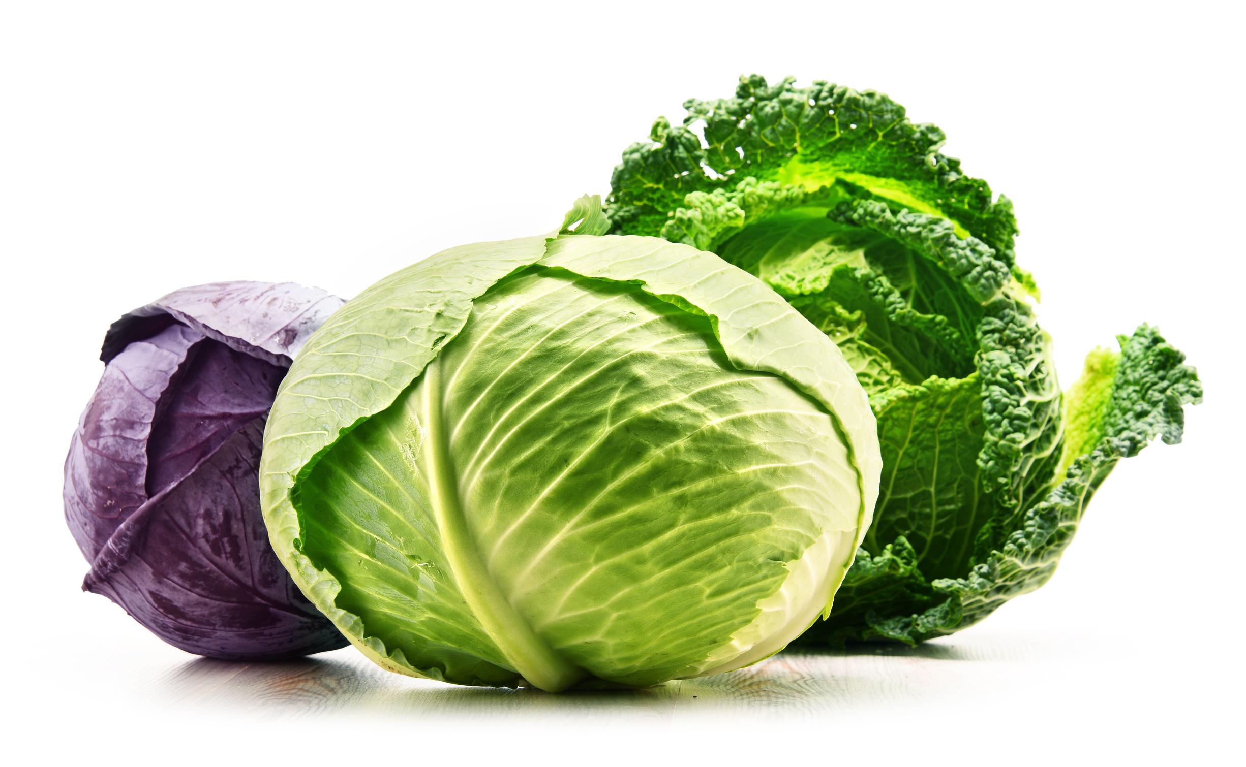 高麗菜是天然胃藥 還能預防4種癌癥 | 營養 | 高麗蔘 | 醫學 | 大紀元