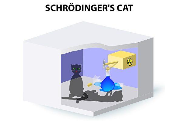 新研究打破傳統量子理論認知 薛定諤貓可以死而復活?