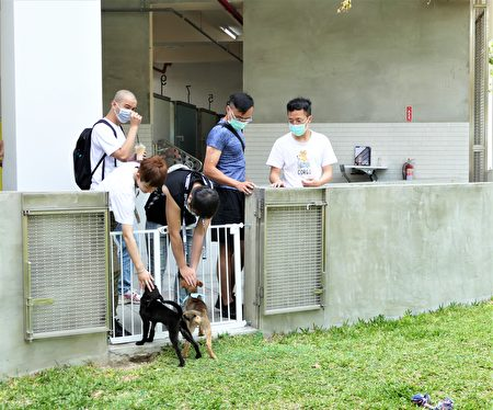 Taichung Animal House Houli Park opened on April 4th. The scene attracted many friends of all ages and children to visit and have fun with the fur kids.