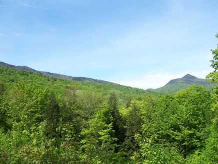 From the same view on Bear Notch Road