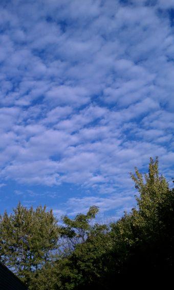 Early morning sky over Somerville.