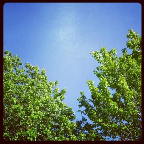 Beautiful day in the neighborhood