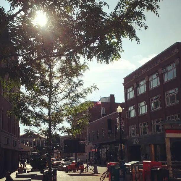 Harvard Square in the morning