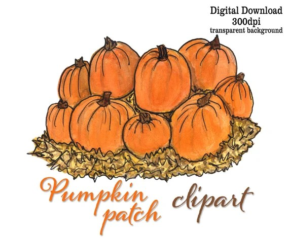 Pumpkins Clipart Digital Download Art For Halloween Fall Festival Invitation Place Card Tags Watercolor Fall Art Pumpkins Straw Hay Farm By Eileen Mckenna Art Catch My Party