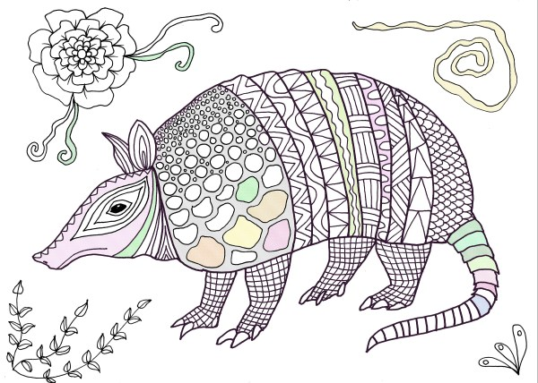 armadillo coloring page # 56