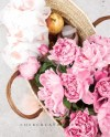Square Styled Stock Photography Flatlay Image Peonies In Etsy