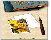Floral Handmade Card, Wil...