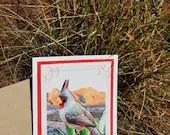 Greeting Card, Desert Bir...