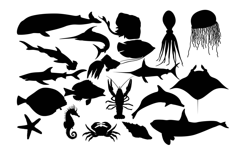Sea Fish Silhouette Fish Clipart Fish Silhouette Saltwater