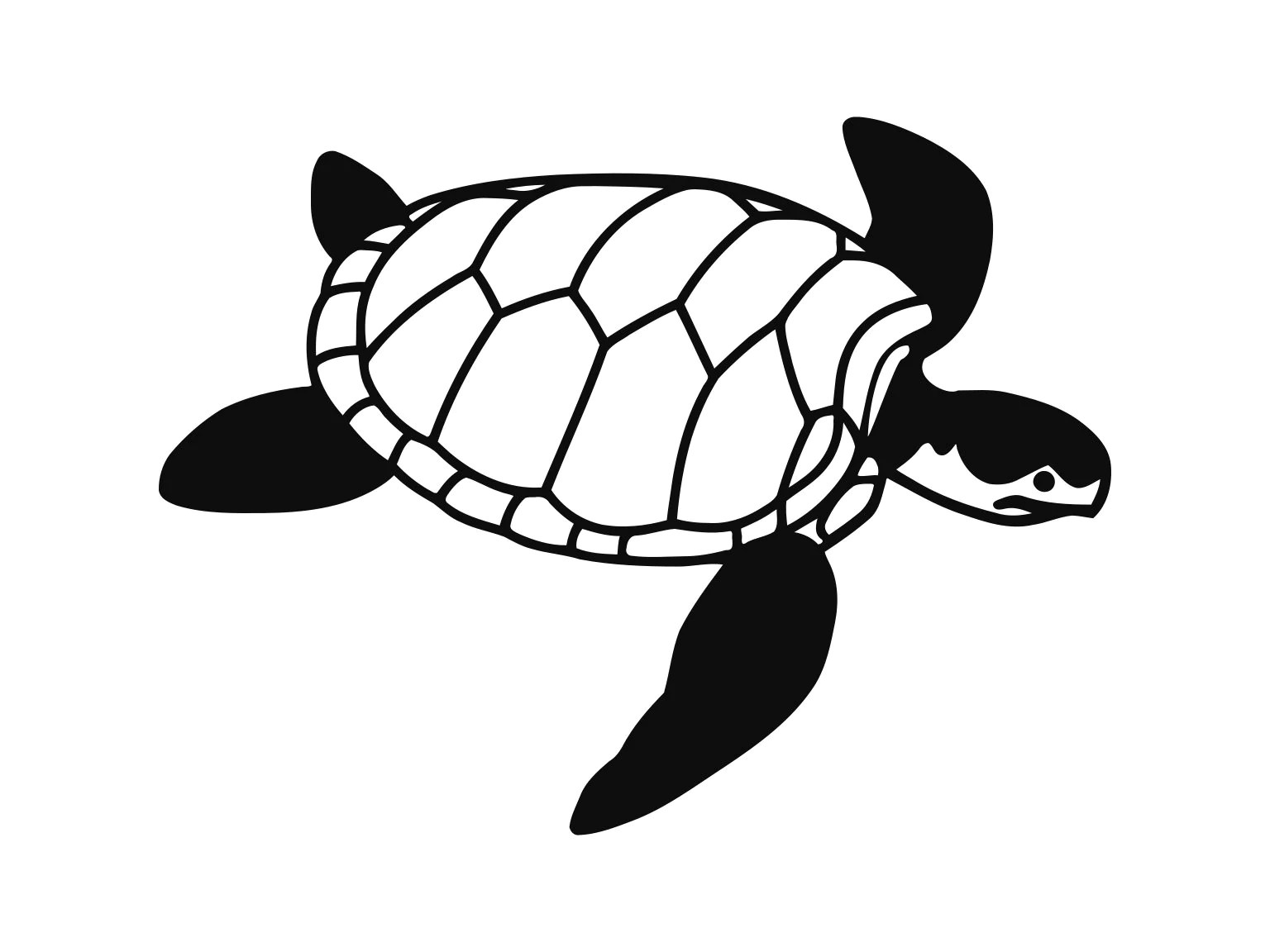 Turtle Svg Sea Turtles Clip Art Svg Files Sea Turtle