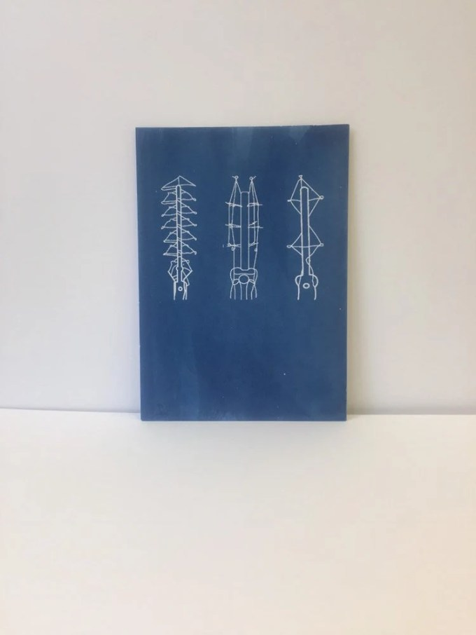 Filament Cyanotypes - pack of three (unframed)
