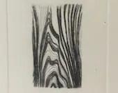 Elm ~ drypoint wood grain...