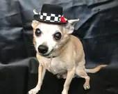 Small Dog Hat