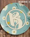Plastic Plate Mockup Template Personalized Plate Mockup Add Etsy