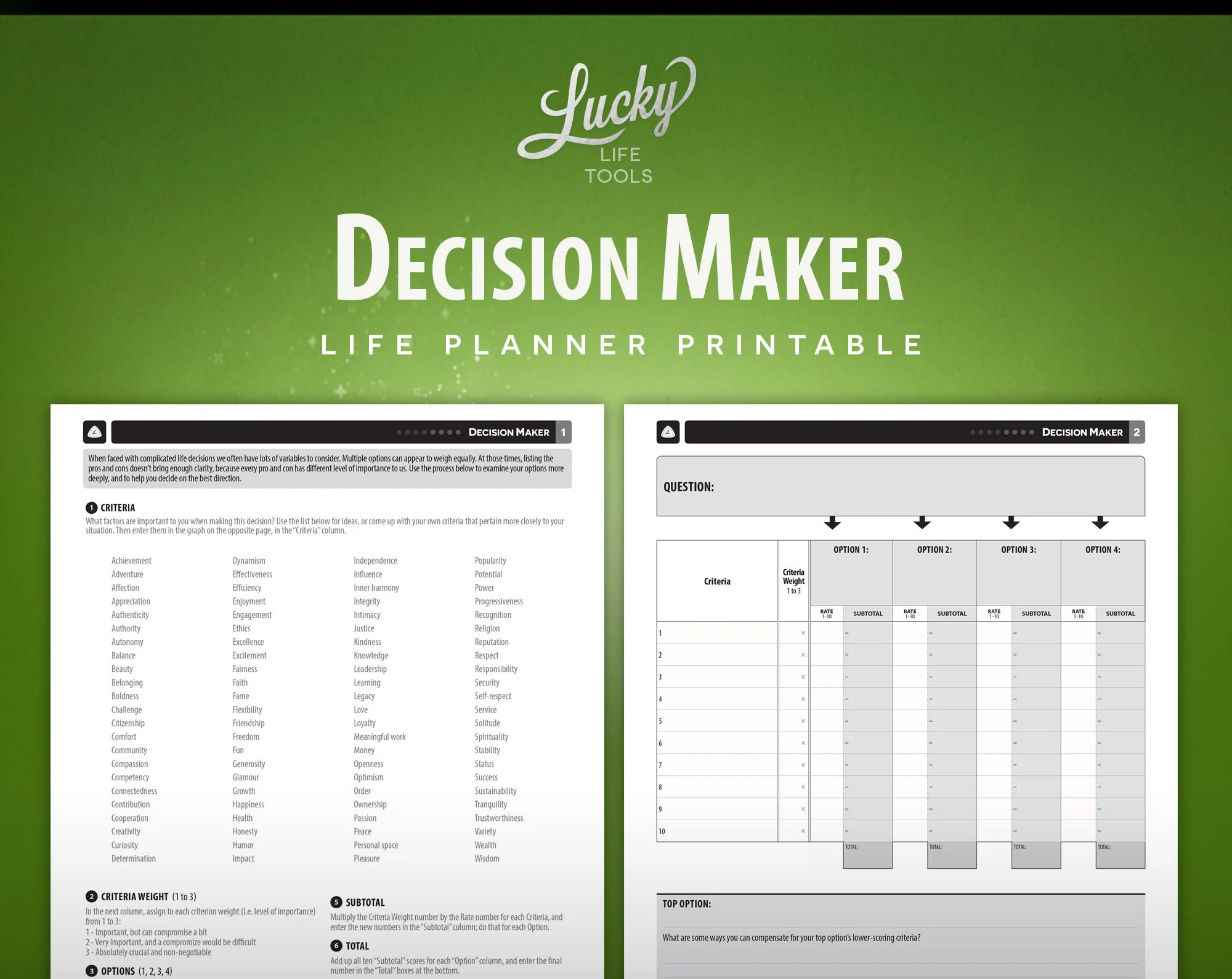 Decision Maker Worksheet Exercise By Lucky Life Tools