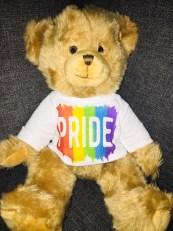 Gay pride bear LGBT rainbow teddy image 0