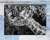 Giclée Art Print, Giraffe Portrait - A4 size graphite drawing by Wild Portrait Artist, realistic painting of a giraffe in black and white