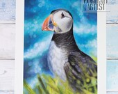 Giclée Art Print 'The Cliff Sentry' - A4 size colored pencil drawing by Wild Portrait Artist, wildlife realistic puffin painting