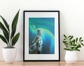 Giclée Art Print 'Mythical Beast' - A4 colored pencil drawing by Wild Portrait Artist, wildlife realistic okapi painting aurora borealis