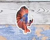 Realistic Betta Fish Sticker, 8x8cm Colourful Siamese Fighting Fish Illustration, Glossy Vinyl Stickers
