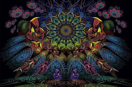 Psychedelic Tapestry Mushroom Psytrance Deco UV Active | Etsy
