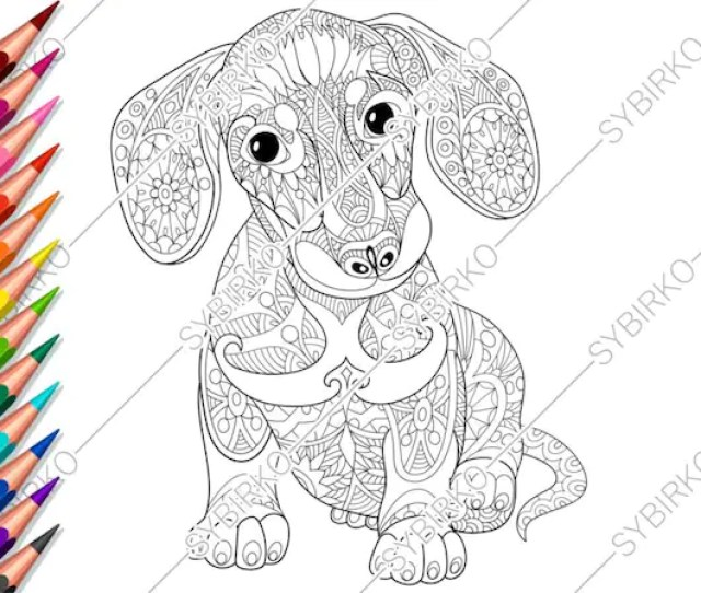 Coloring Pages For Adults Dachshund Dog Dog Coloring Pages Etsy