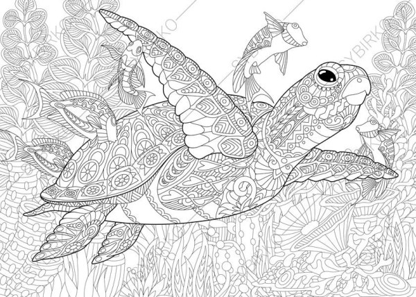 coloring pages turtle # 21