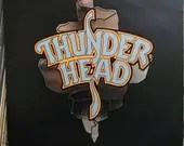 Thunderhead Busted At The...