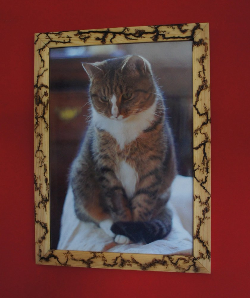 A3 photo frame (thick) wi...