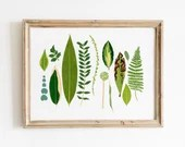 Botanical Leaves Giclèe Art Print