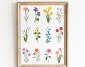 Birth Month Flowers Print - Kitchen Decor - Home Decor - Wild Flowers Chart